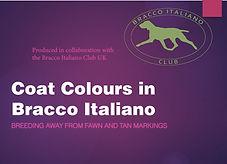 Bracco Coat Colours UK .jpg