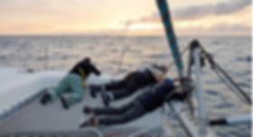 Transatlantique, Transat Catamaran, grand large, observation dauphins, faire de la voile