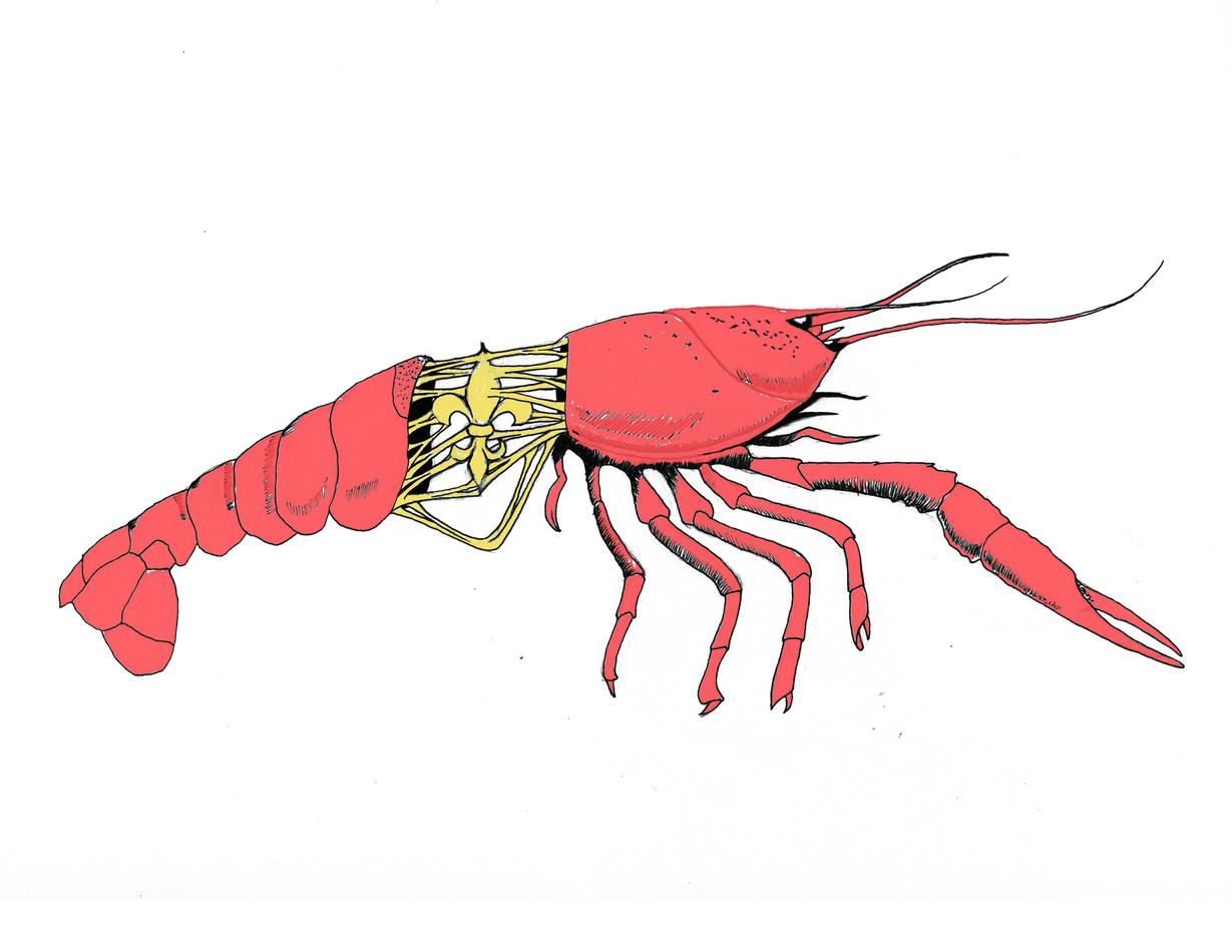 """Crawfish"""
