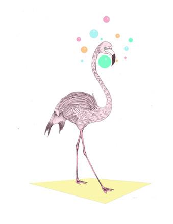 """Flamingosis"""