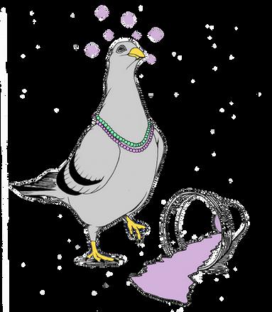 Mardi Gras Pigeon