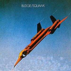 "BUDGIE ""SQUAWK"""