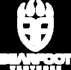 logo BearFoot white.png