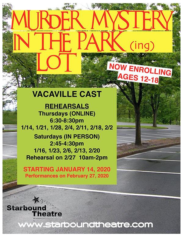 Murder Mystery in the Park Flyer.jpg