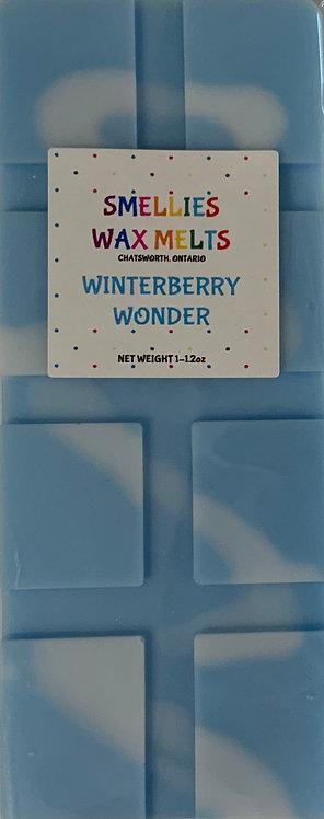 WINTERBERRY WONDER