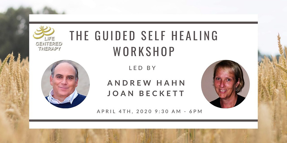 The Guided Self Healing Workshop