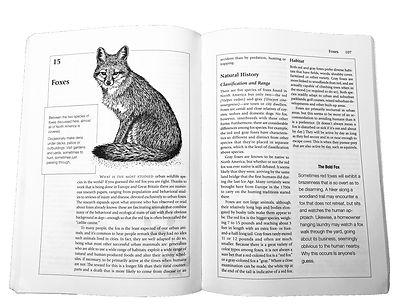 wild-fox-spread.jpg