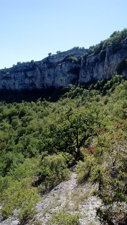Section 4 Trail du chateau des Anglais
