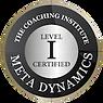 TCI-Graduate-Member-Meta-Dynamics-Level-