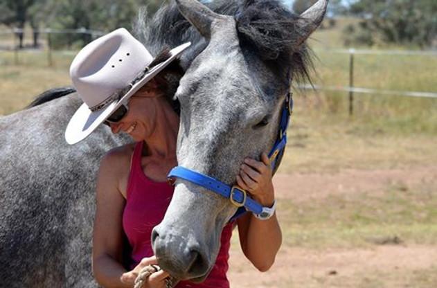 Centaur Connection Tracy Steinhardt