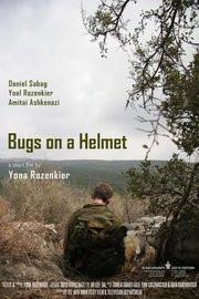 Bugs On a Helmet