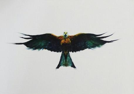 'Red Kite'