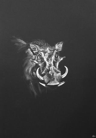 'Warthog'