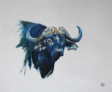 'Buffalo'