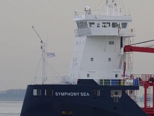 mv Symphony Sea @ Westerschelde (The Netherlands)
