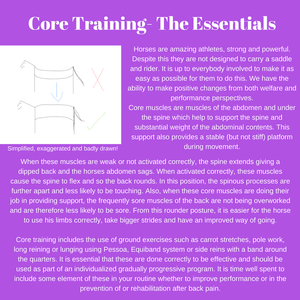 core training for horses