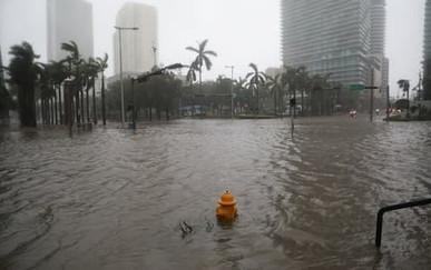 Miami Underwater