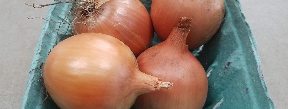 Yellow Onions - 1 lb