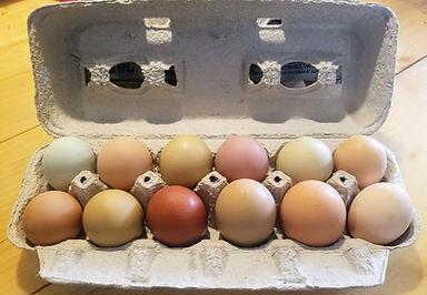 eggs - 1 dz.jpg