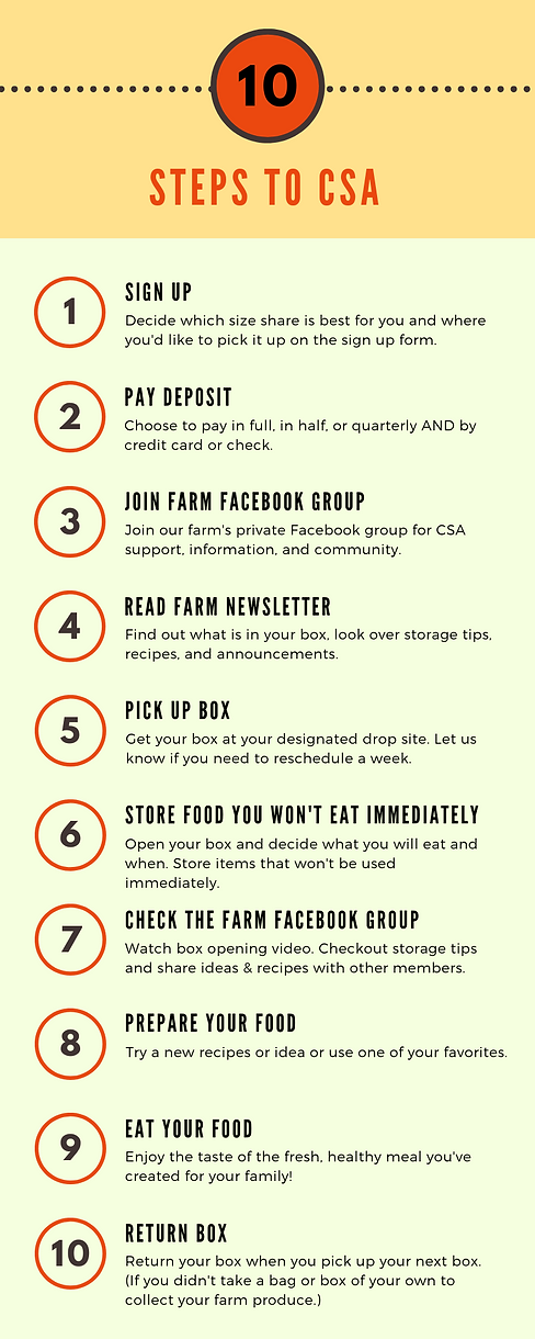 10 steps to csa flyer.png