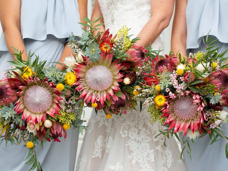 Jodi & Aaron's Wedding