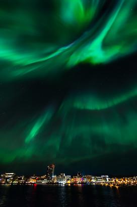 Bodoe auroras I.jpg