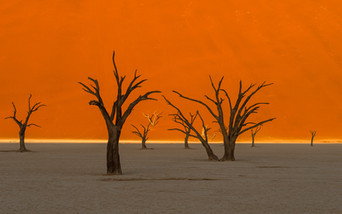 Deadvlei sunset II.jpg