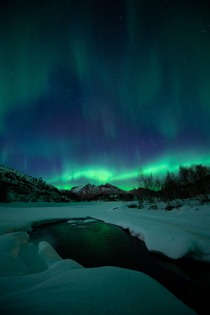 Auroras by the river III.jpg