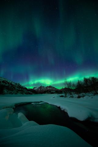 Auroras by the river III.jpg