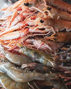 Seafood shack take 2-15.jpg