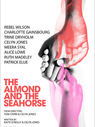 The Almond & The Seahorse