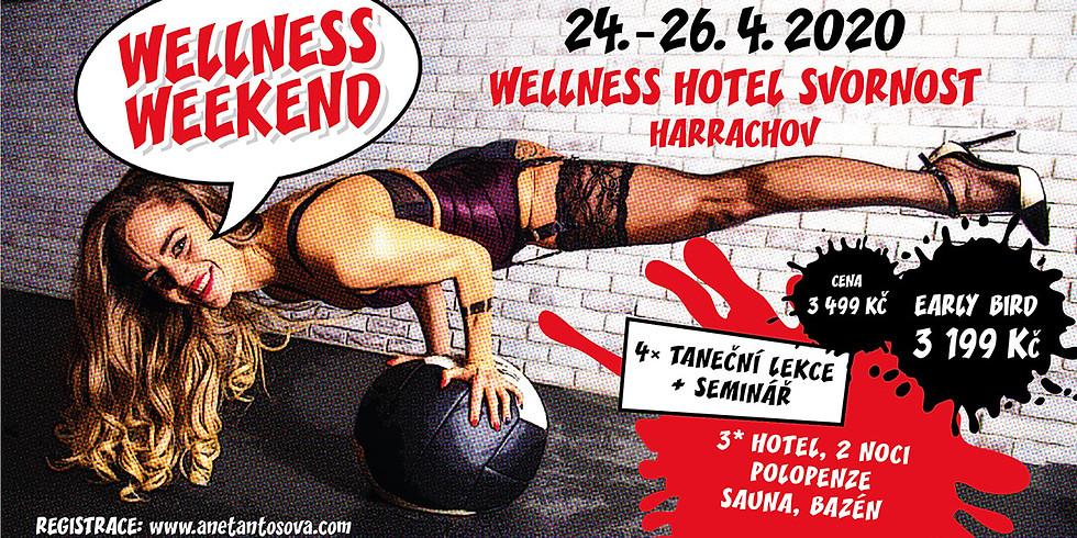 WELLNESS WEEKEND/ HARRACHOV