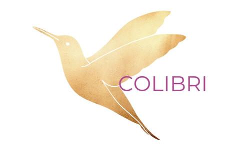 O Colibri em tempos conturbados.