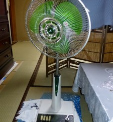 Electric Fans May Lead to Elderly Health Risks, Study Shows