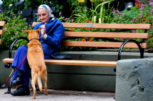 Dog Ownership: Key to Better Senior Health