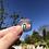 Thumbnail: Rainbow Badge 🌈