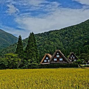 Shirakawa-go%20(autumn)_%C2%A9%E5%B2%90%