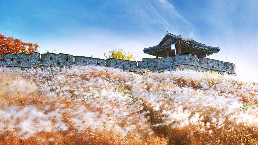 3-DAY Authentic Korea