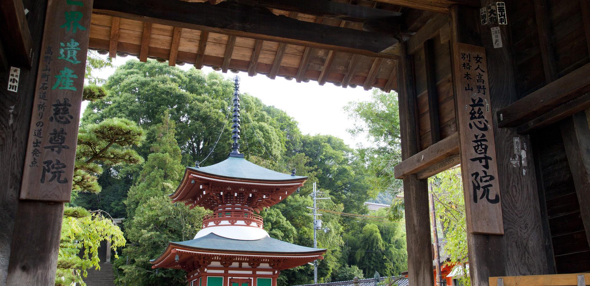 5. Jison-in Temple.jpg