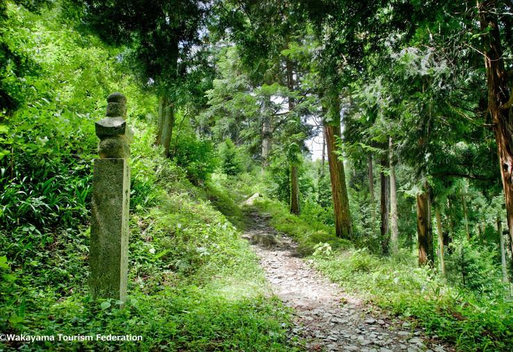 2. Koyasan Choishimichi Pilgrimage Route