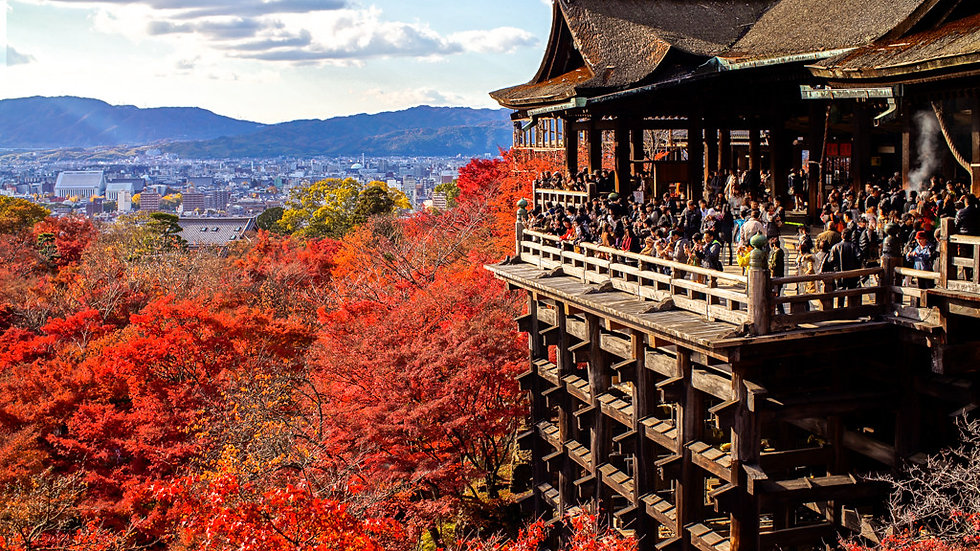 Traditional Kyoto Tour