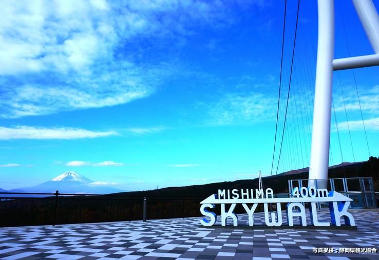 4. Mishima Skywalk.jpg