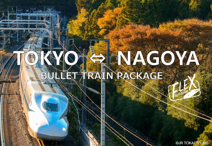 11. FLEX-NAGOYA.jpg