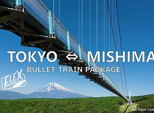 JRFLEX-MISHIMA-1.jpg