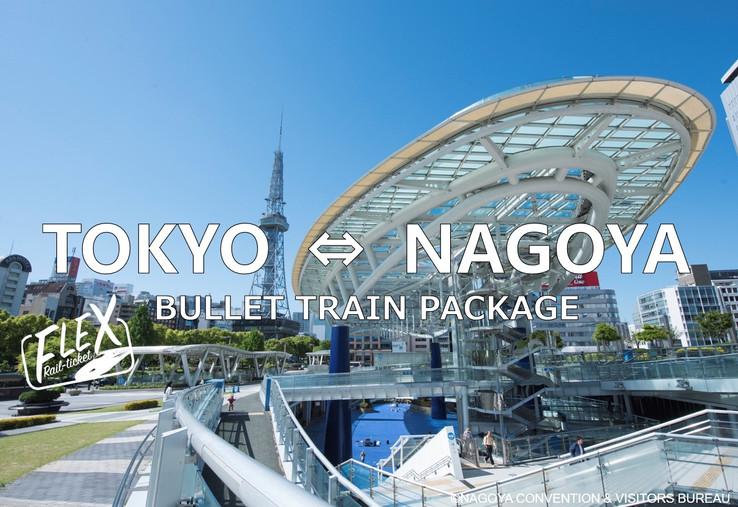 1. FLEX-NAGOYA.jpg