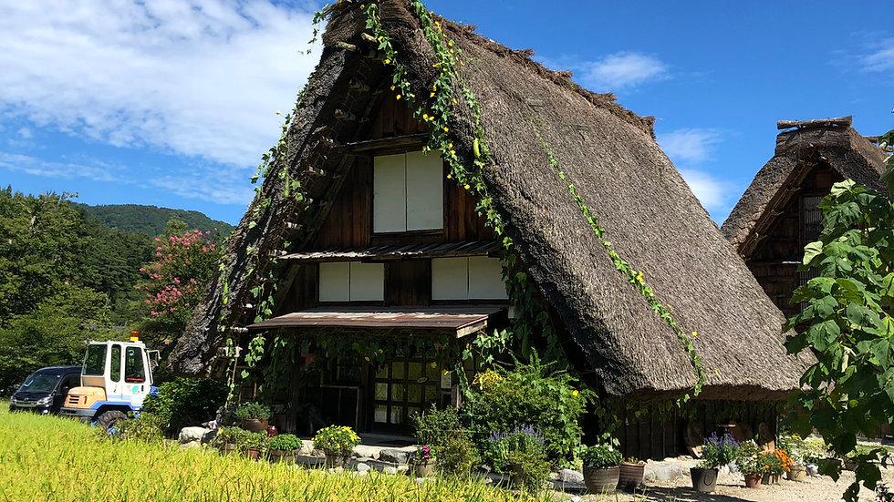 1-DAY World Heritage Shirakawago & Gokayama Tour (With Lunch), from Kanazawa