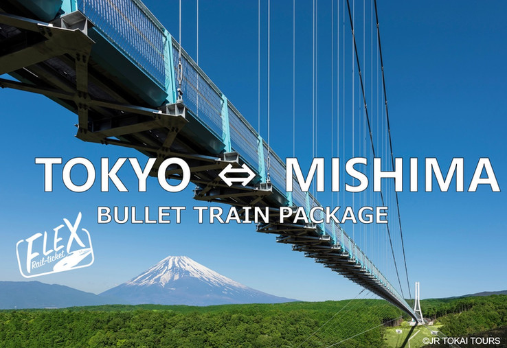1. FLEX-MISHIMA.jpg