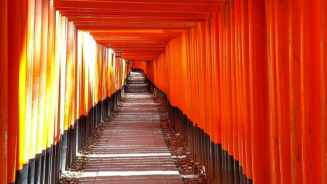 [Curated, Deluxe Plan] 7 Days in Tokyo, Kyoto & Hakone (Mt. Fuji) Private Tour