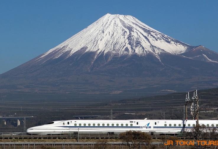 10. FLEX-MISHIMA.jpg