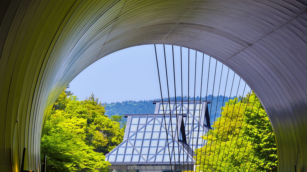 Miho Museum & Shigaraki Pottery Town Private tour (1-4 seater)